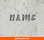 Junco en letras grafitti