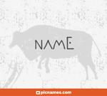 Junco en letras neol�ticas